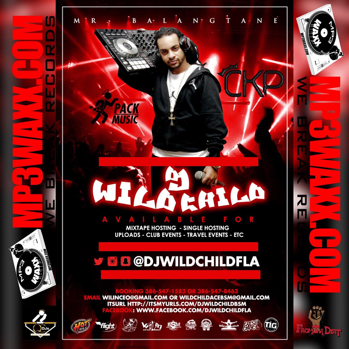 DJ WildChild
